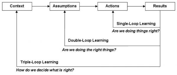 Triple loop lärande